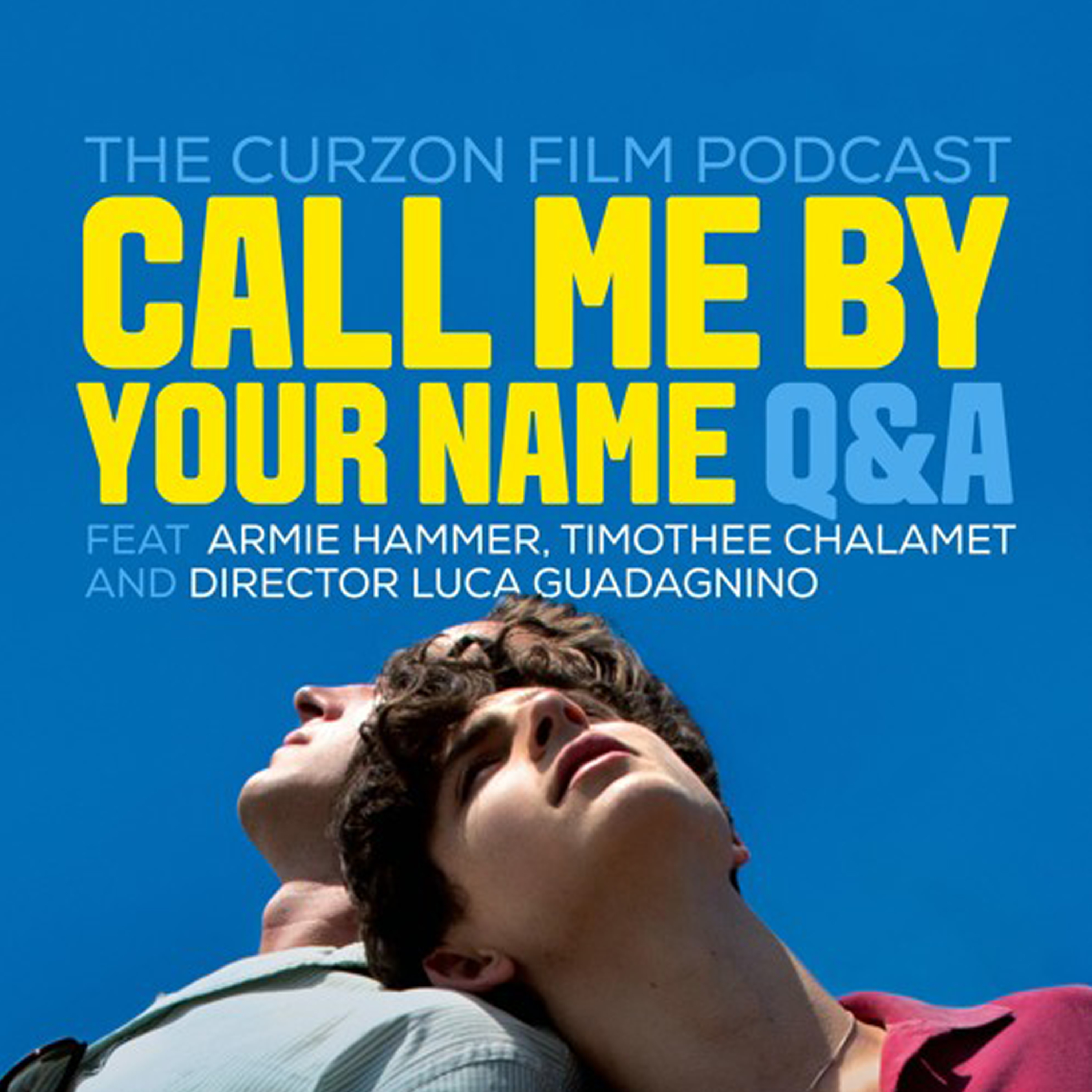Call Me By Your Name Qa With Timothée Chalamet Armie Hammer