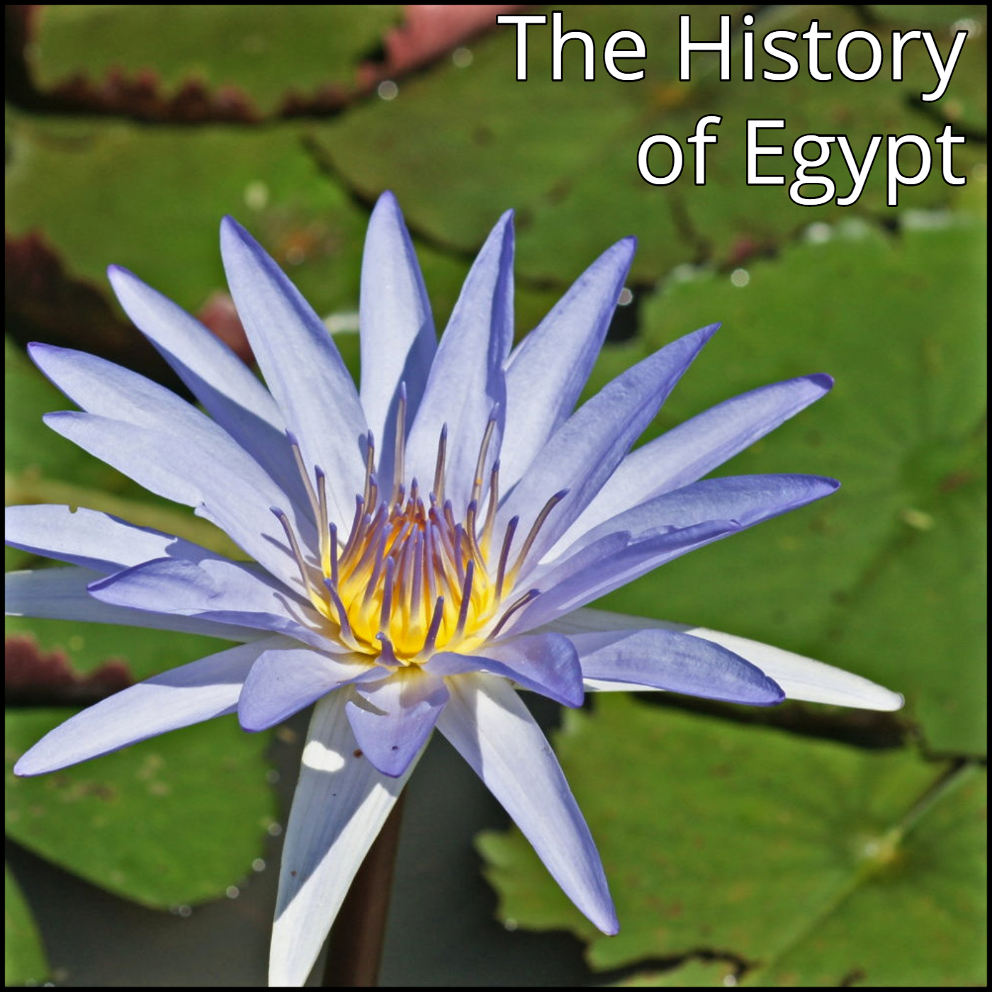 The History Of Egypt Podcast On Acast